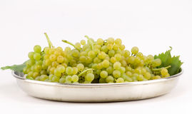 Muscat grapes isolated on white. Group of muscat grapes isolated on white Royalty Free Stock Images