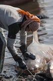 MUSCAT/OMAN 15 de janeiro de 2007 - o pescador omanense arrasta um tubarão como Foto de Stock Royalty Free