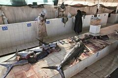 Muscat, Oman mercado de peixes em Muttrah, centro de cidade de Muscat, Omã Diverso atum e outros peixes em tendas imagem de stock royalty free