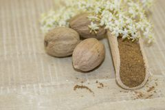 Muscat walnut and white flower. Muscat walnut with a white flower and cloves on a wooden base Stock Photo