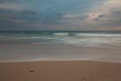 Muschel auf dem Strand lizenzfreie stockbilder