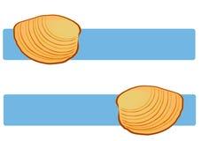 Muschel-Shells auf Blau Stockbilder