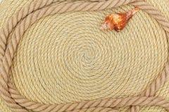 Muschel und Marinenetz liegen auf dem Hintergrund, der vom Seil gemacht wird Stockfotografie