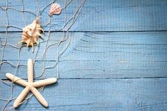 Muscheln auf blauem Brettferien-Feiertagshintergrund Stockfotos