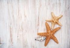 Muscheln auf dem alten schäbigen schicken hölzernen Hintergrund Stockfotos