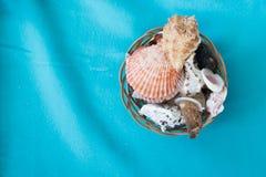 Muscheln in einem Korb Stockfotografie