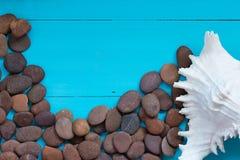 Muscheln und Kiesel auf hölzernem Hintergrund Stockbilder