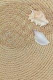 Muscheln und Seenetz liegen auf dem Hintergrund, der vom Seil gemacht wird Stockfoto