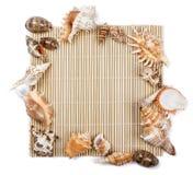 Muschelrahmen von Muscheln Stockfoto