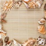 Muschelrahmen von Muscheln Lizenzfreies Stockfoto