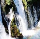 Muschio, cascate ed arcobaleni fotografia stock