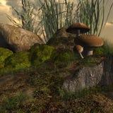 Muschio e funghi Fotografia Stock Libera da Diritti