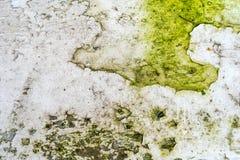 Muschio e ruggine verdi sulla superficie di metallo con i modelli e le crepe - struttura di alta qualità/fondo fotografia stock libera da diritti