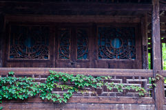 Muschio ed edera intorno alla vecchia casa di legno fotografia stock libera da diritti