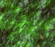 Muschio sotto acqua illustrazione di stock