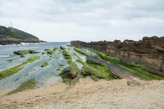 Muschio sulla costa rocciosa Fotografie Stock