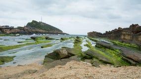 Muschio sulla costa rocciosa nell'ampia vista Fotografia Stock Libera da Diritti