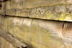 Muschio verde su un vecchio recinto di legno Fotografia Stock Libera da Diritti