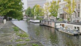 Muschio verde sul lungomare di AmsterdamView alle chiatte al canale di Amstel a Amsterdam, Paesi Bassi stock footage
