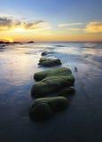Muschio verde sulle rocce al tramonto Fotografie Stock
