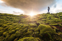 Muschio vulcanico Islanda immagini stock libere da diritti