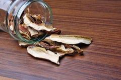 Muschrooms Fotografia de Stock