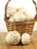 Muschrooms in basket Royalty Free Stock Photography