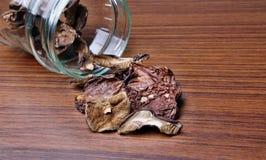 Muschrooms torkade Arkivfoton
