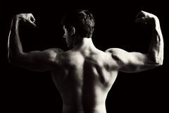 Muscle. Back view of a muscular young man in black and white Royalty Free Stock Images