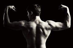 Muscle Images libres de droits
