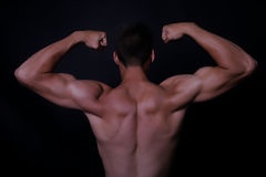 Muscle Photographie stock