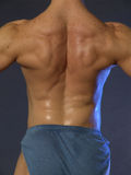 Muscle back royalty free stock photo