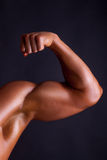 Muscle biceps on black background Stock Image