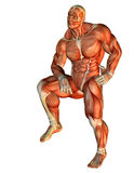 Muscle Body Builder standing on one leg. 3D Rendering Muscle Body Builder standing on one leg Royalty Free Stock Image