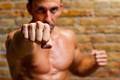 Muscle boxer shaped man fist to camera. On brickwall Stock Image