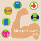 Muscle-building set Royalty Free Stock Image