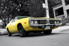 Muscle Car. An classic American muscle Car stock photo