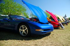 Muscle Cars. Polished muscle cars lined-up for the car show Royalty Free Stock Photo