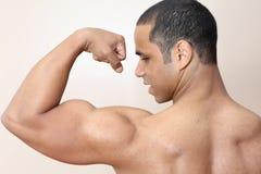 muscle d'homme images libres de droits