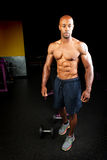 Muscle Fitness Physique Royalty Free Stock Photos