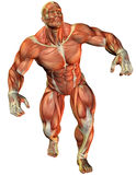 Muscle force an athlete. 3D Rendering Muscle force an athlete Stock Photos
