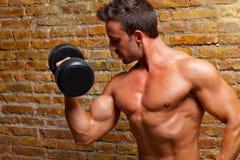 Muscle geformten Karosserienmann mit Gewichten auf Backsteinmauer Lizenzfreie Stockfotos