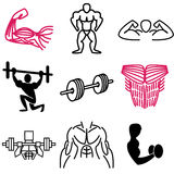 Muscle and gym icons Royalty Free Stock Image