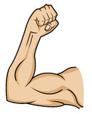 Muscle hand Stock Photos