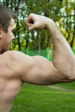 Muscle hand Royalty Free Stock Images
