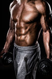 Muscle male chest Stock Image