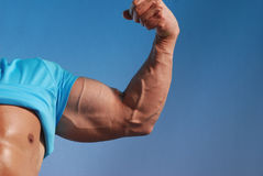 Muscle man. Sexy male model flexing his bicep Stock Image