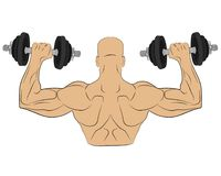 Muscle man with barbell. body building concept drawing illustration stock image