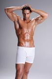 Muscle Man In Boxer Briefs Royalty Free Stock Image