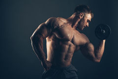 Muscle man doing bicep curls.  Royalty Free Stock Photos
